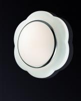 Настенно-потолочный светильник BAHA 2403/2C
