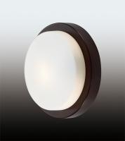 Настенно-потолочный светильник HOLGER 2744/1C