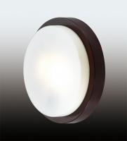 Настенно-потолочный светильник HOLGER 2744/2C