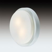 Настенно-потолочный светильник HOLGER 2745/1C