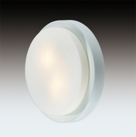 Настенно-потолочный светильник HOLGER 2745/2C
