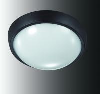 Уличный светодиодный светильник настенно-потолочного монтажа OPAL 357184