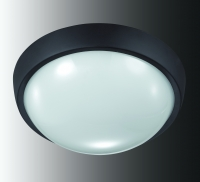 Уличный светодиодный светильник настенно-потолочного монтажа OPAL 357186