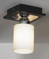 Потолочный светильник PROMO LSF-6117-01