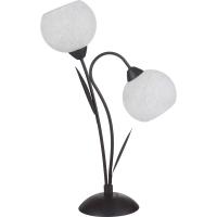 Настольная лампа LUSSOLE S.R.L LSF-6294-02