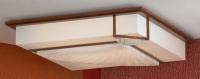 Настенно-потолочный светильник PROMO LSF-9022-03