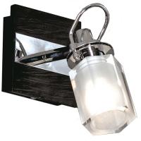 Настенный светильник PROMO 2 LSL-7901-01