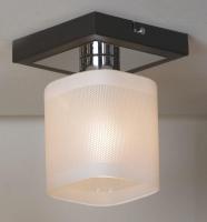 Потолочный светильник PROMO 2 LSL-9007-01