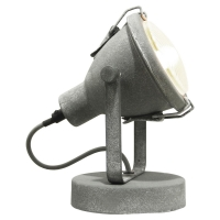 Настенно-потолочный светильник LOFT LSP-9883