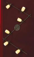 Настенно-потолочный светильник PROMO LSQ-6919-06