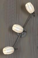 Настенный светильник PROMO 2 LSX-6701-03
